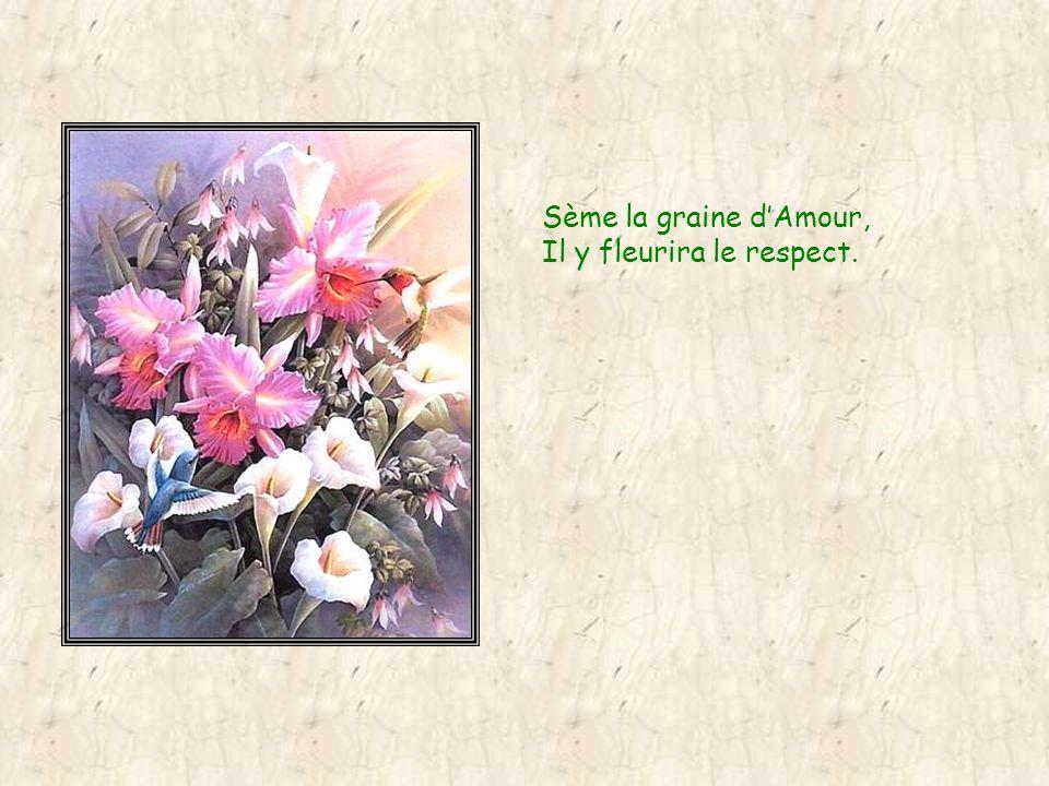 Sème la graine dAmour, Il y fleurira le respect.