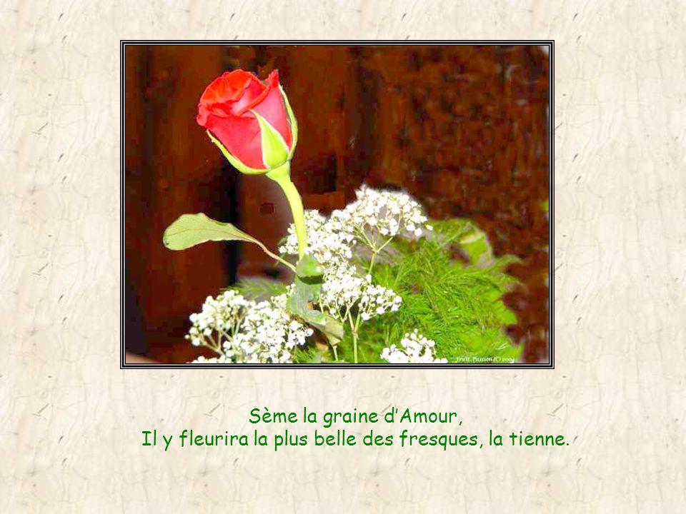 Sème la graine dAmour, Il y fleurira la plus belle des fresques, la tienne.