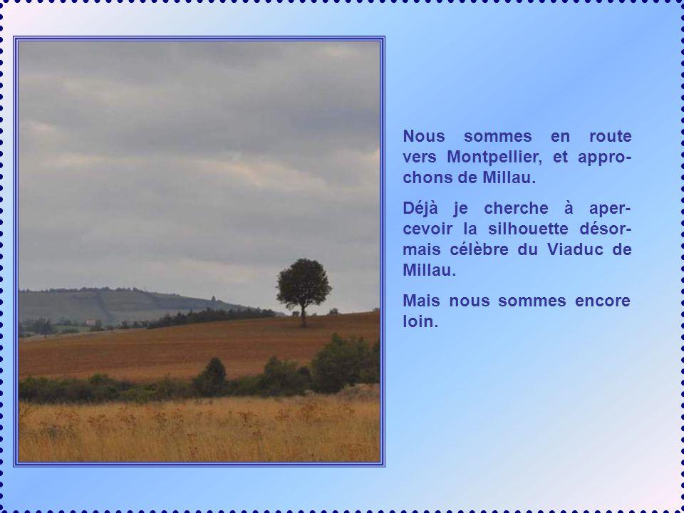 Nous sommes en route vers Montpellier, et appro- chons de Millau.