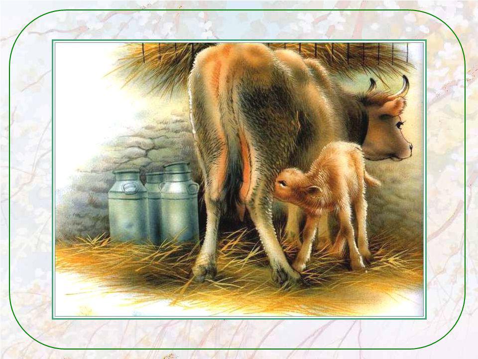 Encore des noms ! Comment sappelle la maman chat ? Je suis sûre que tu le sais ! Et les bébés chats ? Comment sappelle le mâle de la vache ? Et son bé