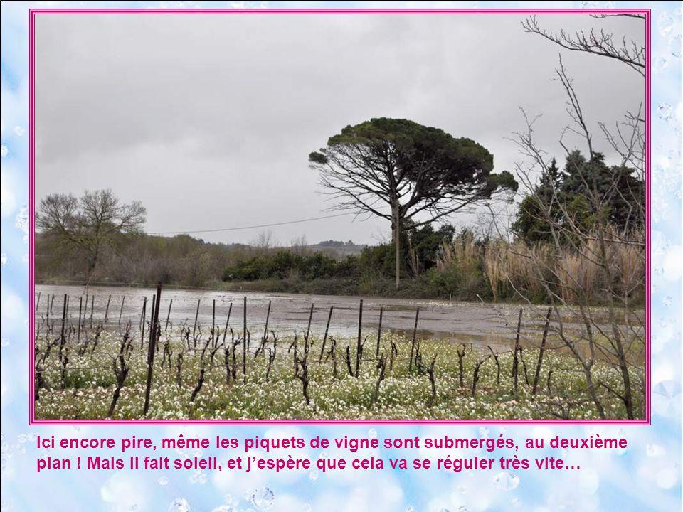 17 mars 2011. Nous sommes à Alignan-le-Vent, charmante bourgade du Midi près de Béziers. Des pluies diluviennes ont ravagé la région, notamment le vil