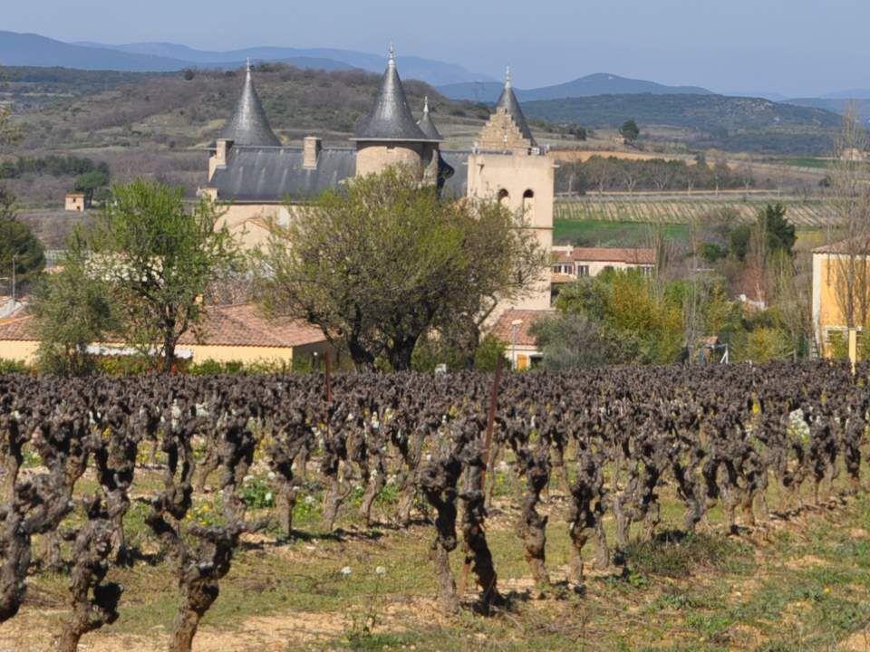 Nous sommes dans la région du vin (mais où nest-on pas dans la région du vin, en Fran- ce .