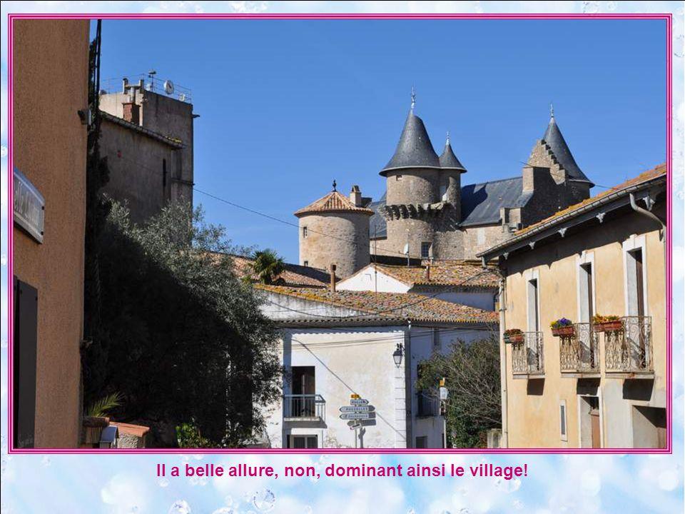 Visible de loin au milieu des vignobles, (quoique le clocher carré de léglise locculte quelque peu) voici le château de Morgon.
