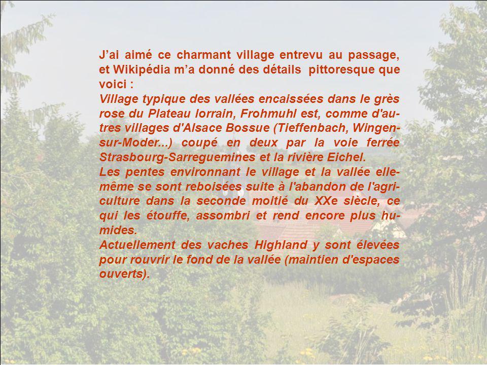 Jai aimé ce charmant village entrevu au passage, et Wikipédia ma donné des détails pittoresque que voici : Village typique des vallées encaissées dans le grès rose du Plateau lorrain, Frohmuhl est, comme d au- tres villages d Alsace Bossue (Tieffenbach, Wingen- sur-Moder...) coupé en deux par la voie ferrée Strasbourg-Sarreguemines et la rivière Eichel.
