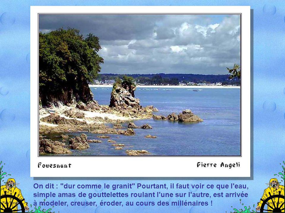 Et que dire des îles ? Le golfe du Morbihan en compte, dit- on, 365, grandes ou minuscules, abritant une faune et une flore souvent spécifiques.