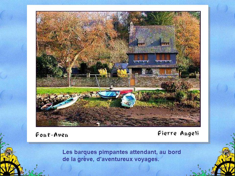 La Bretagne, c'est d'abord une fragrance, un parfum d'iode et d'embruns, offres du ciel et de l'océan.