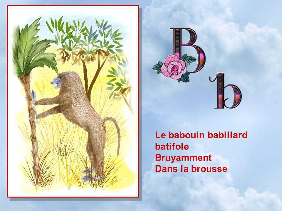 Le babouin babillard batifole Bruyamment Dans la brousse