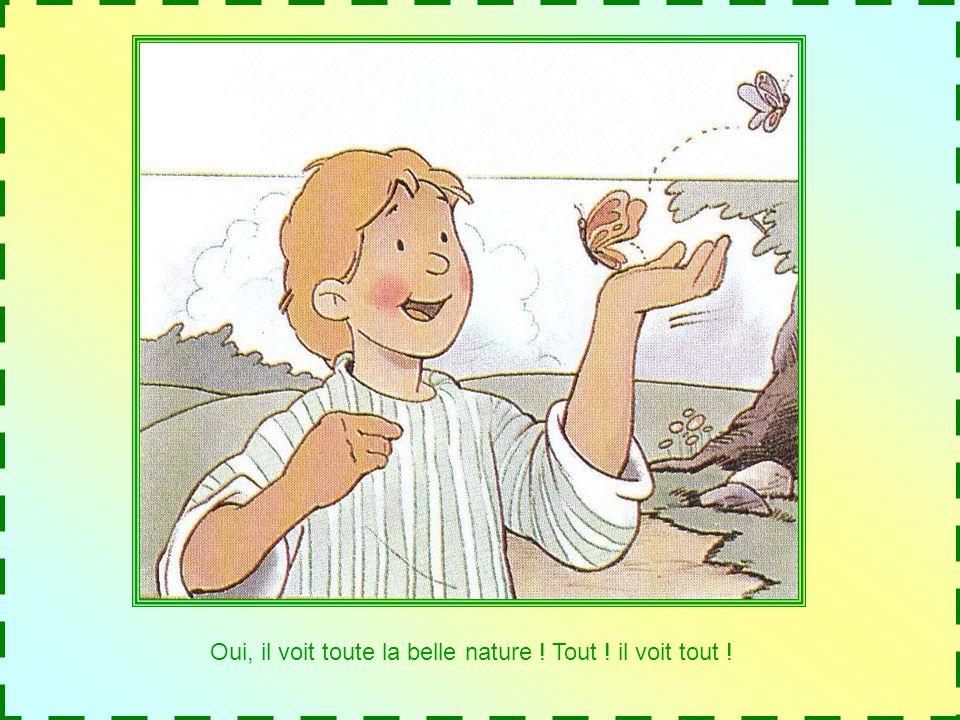 Il peut voir loie blanche et les canards mordorés, la grenouille verte et les poissons rouges, les petites brins dherbe et les grands arbres.