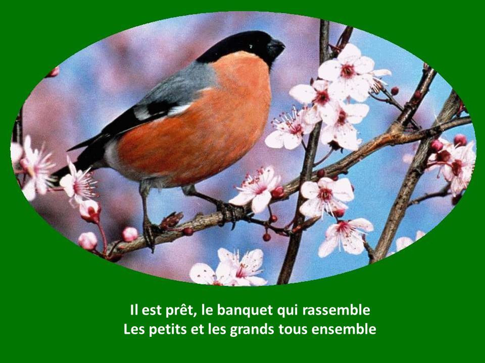 Ce printemps nourrira tous tes frères, Boute-selle, boute-vent.