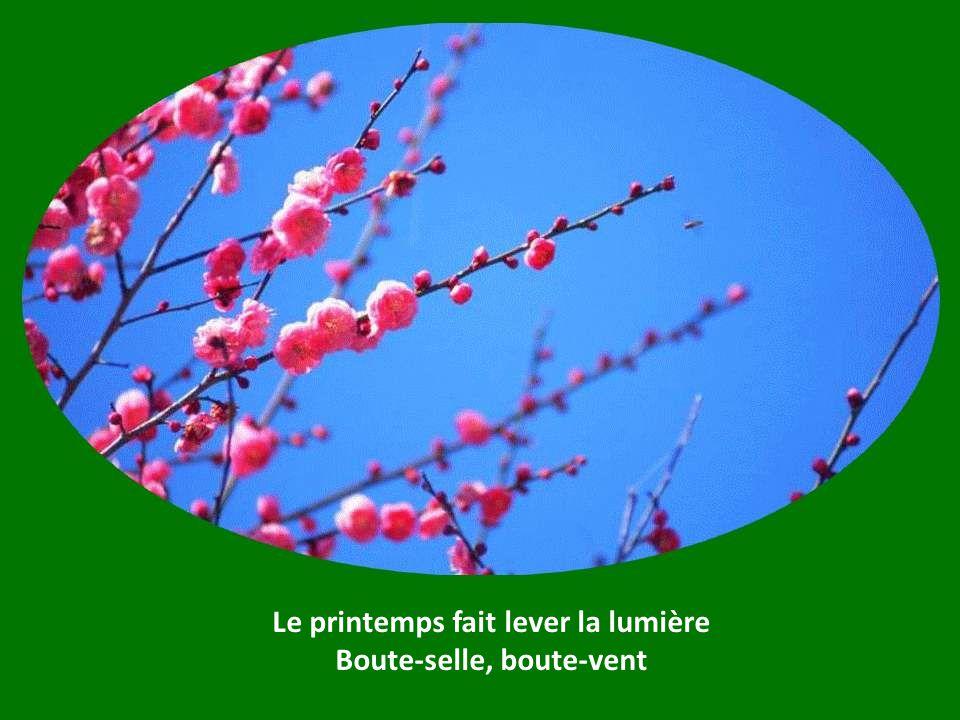 Le printemps fait lever la lumière Boute-selle, boute-selle