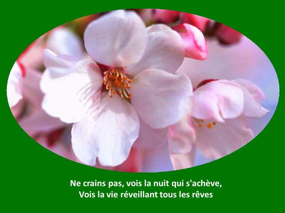 Ce printemps nourrira tous tes frères, Boute-selle, boute-selle