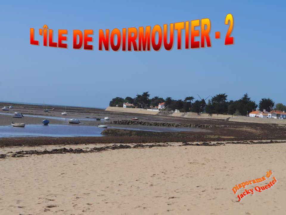 Des plages que les communes sefforcent dentretenir et de préserver.
