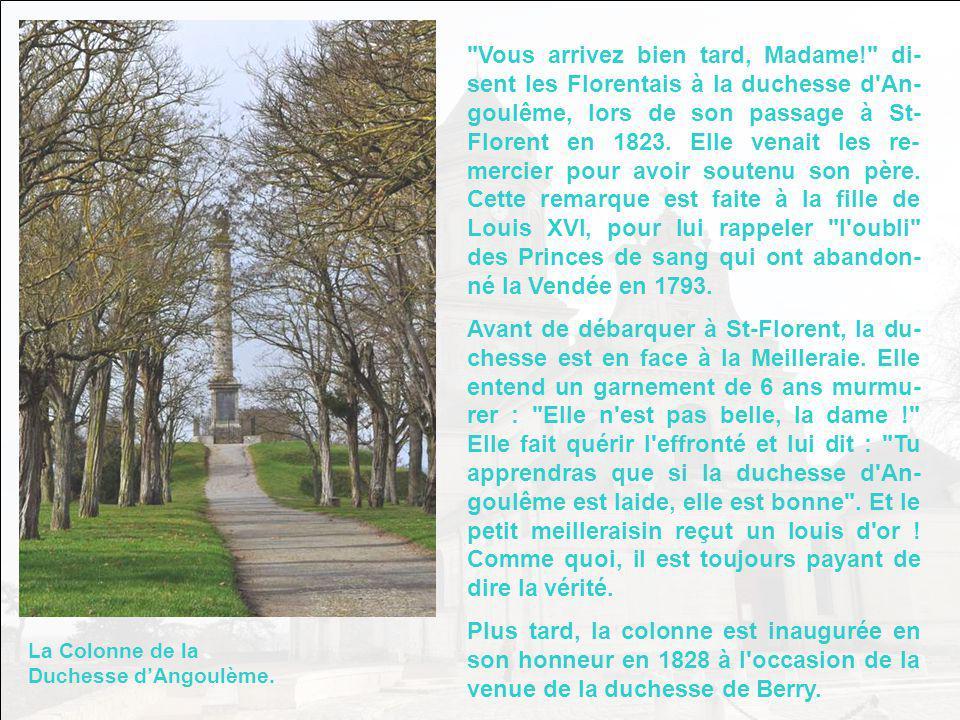 Au centre dune immense esplanade qui domine la vallée de la Loire et lÎle Batailleuse se dresse léglise abbatiale de Saint-Florent-Le- Vieil.