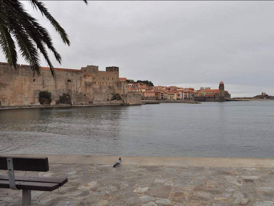 Une silhouette trapue domine la ville de Collioure : le Fort Saint Elme.