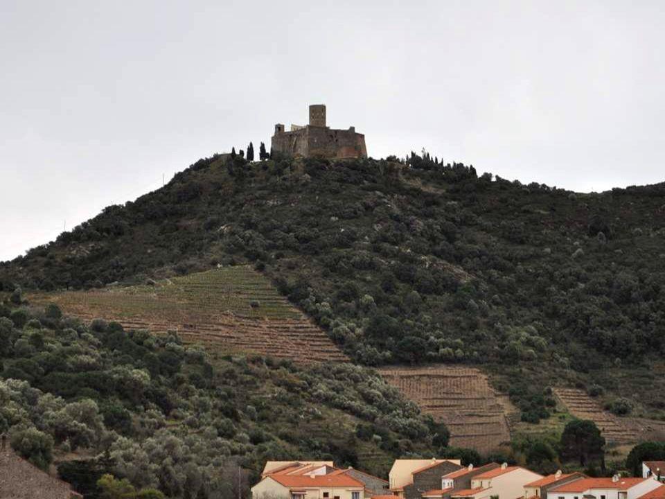 Nous voilà sur les hauteurs de Collioure, après de nombreux arrêts pour mieux admirer le paysage ainsi modelé par lhomme.