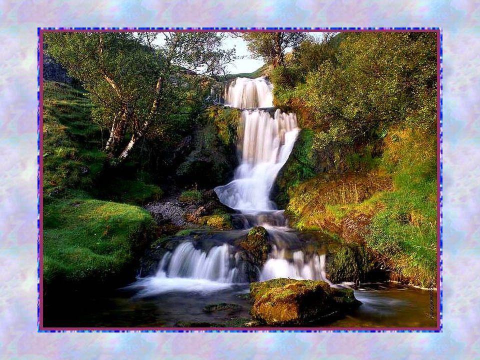 La Sagesse Pas nimporte quelle sagesse, mais cette Sagesse éminente de lamour par lequel le Saint-Esprit nous fait goûter et voir combien le Seigneur