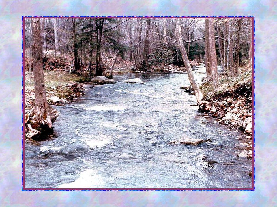 Voilà donc les sept dons de lEsprit, tels quils sont expliqués par le Père Albert-Marie de Monléon, dans une méditation publiée par le missel « Ephata » Mais moi, jai envie de vous dire plus simplement que lEsprit-Saint est un compagnon de route, une force sur laquelle on peut toujours compter, un ami qui écoute avec bienveillance nos demandes, nos révoltes et nos coups de cœur… Il pleure avec nous, il se réjouit avec nous.