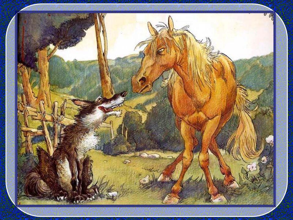 Il était une fois… Début magique ! Il était une fois un jeune loup affamé. Que fait-il ? Pardi ! Il part à la recherche dune bête à manger. Ses ambiti