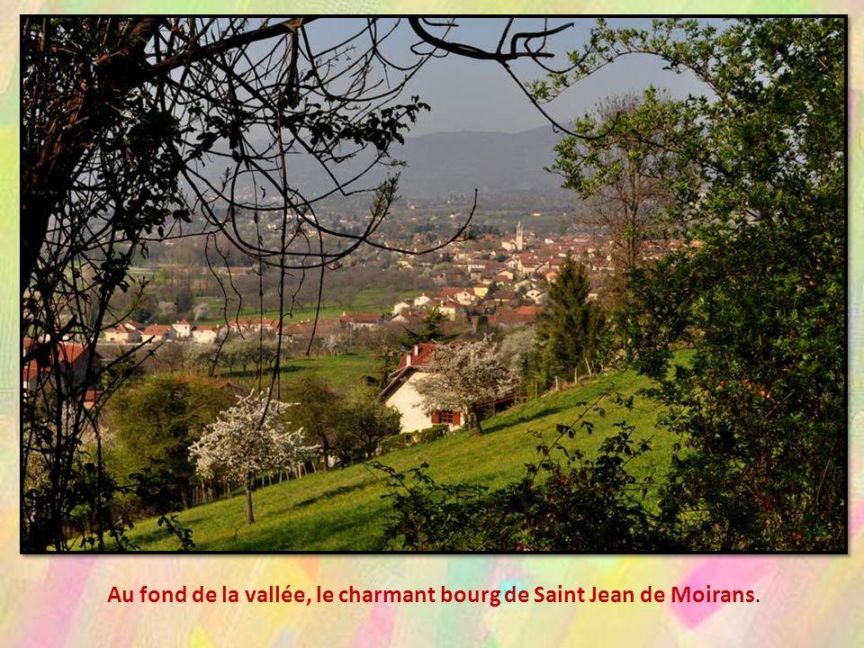 La ville de Voiron possède une zone naturelle d intérêt écologique, fau-nistique et floristique (ZNIEFF), cet espace naturel terrestre remarquable constitue une partie du patrimoine naturel de la commune.