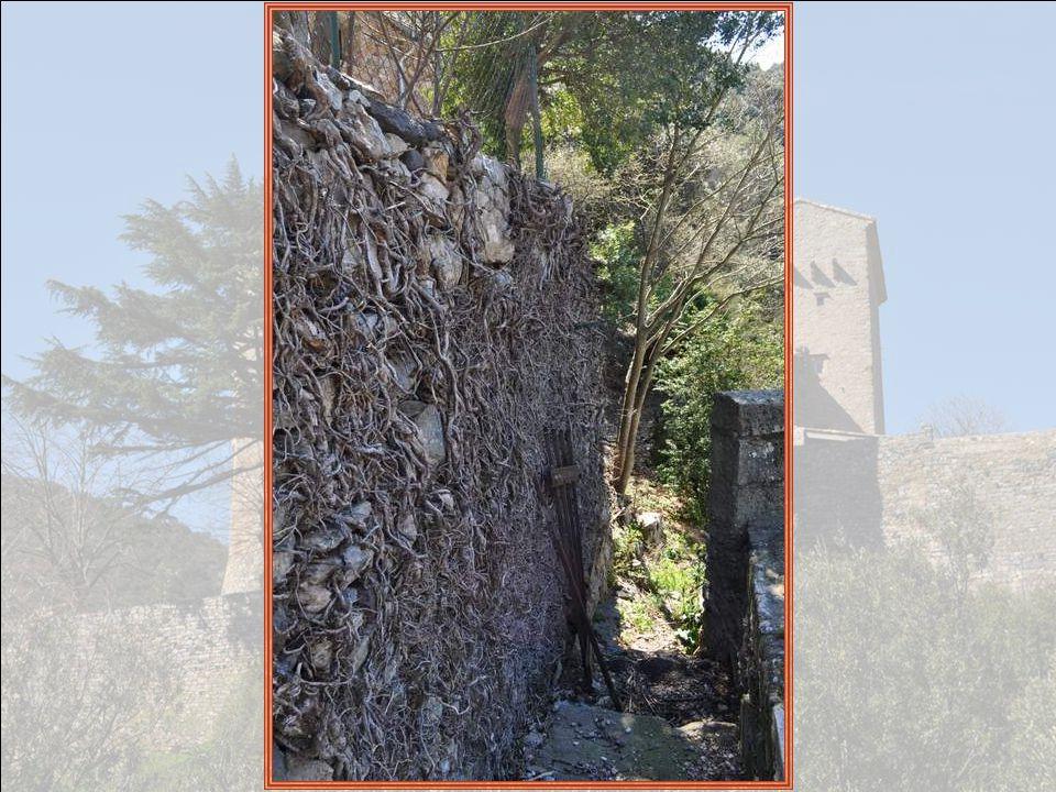 La commune et ses alentours sont bien connus chez les géologues qui y trouvent des espaces géographiques délimitables - le calcaire en bancs lités du