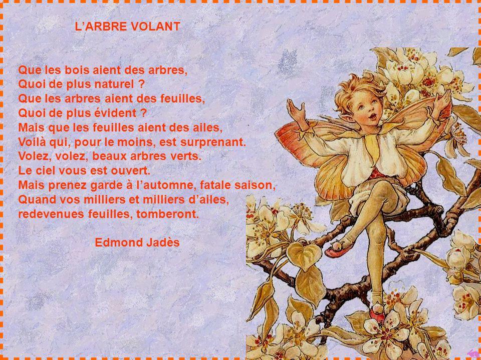 IL PORTE UN OISEAU DANS SON CŒUR Il porte un oiseau dans son cœur, Lenfant qui joue des heures, seul, Avec des couronnes de fleurs Sous lombre étoilée
