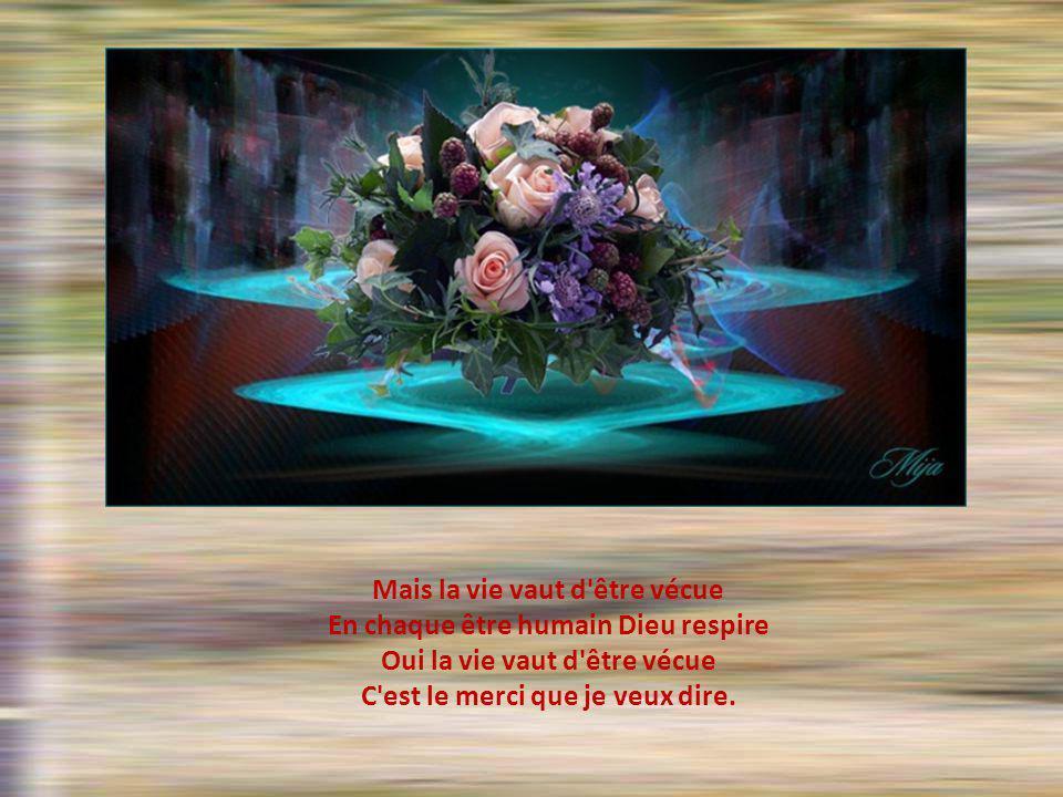 Je dirai que la vie me cause Bien sûr j'ai eu des jours de froid Bien sûr, j'ai vu faner les roses J'ai mes comment et mes pourquoi.