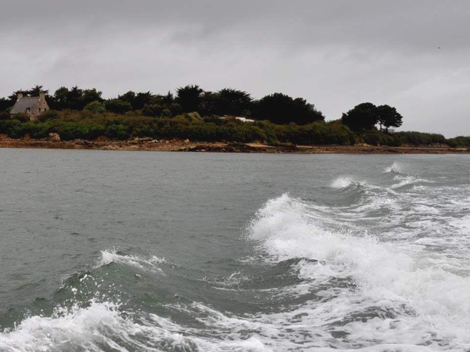 Qui dira la beauté de la vague profonde, du golfe vert ou bleu selon léclat du ciel, de la course sans fin de ces eaux vagabondes qui vont à lhorizon
