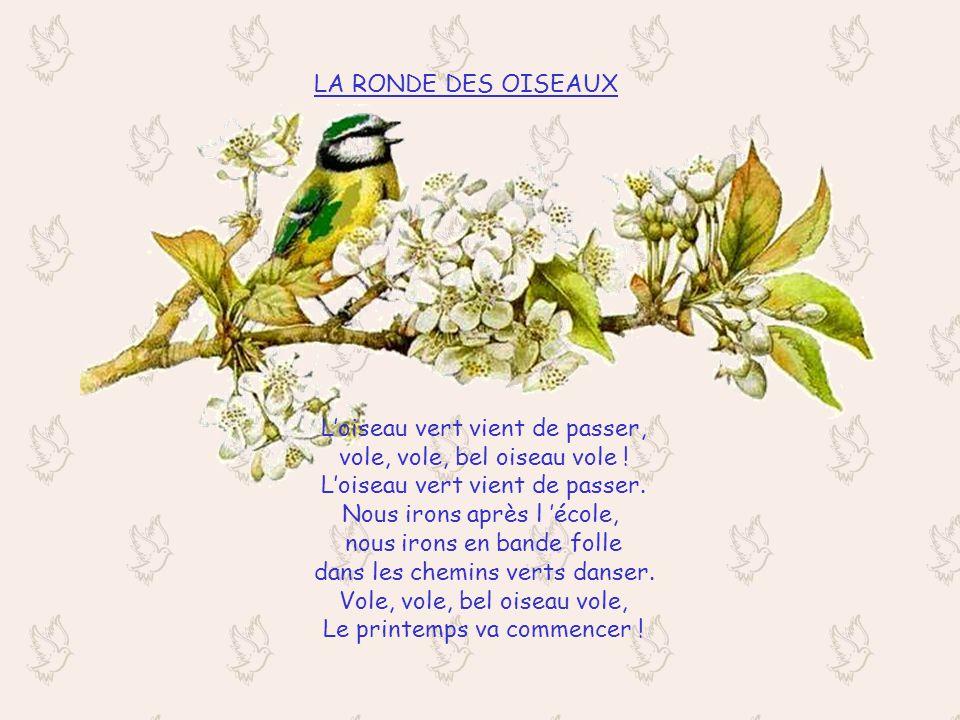 LA RONDE DES OISEAUX Loiseau vert vient de passer, vole, vole, bel oiseau vole .