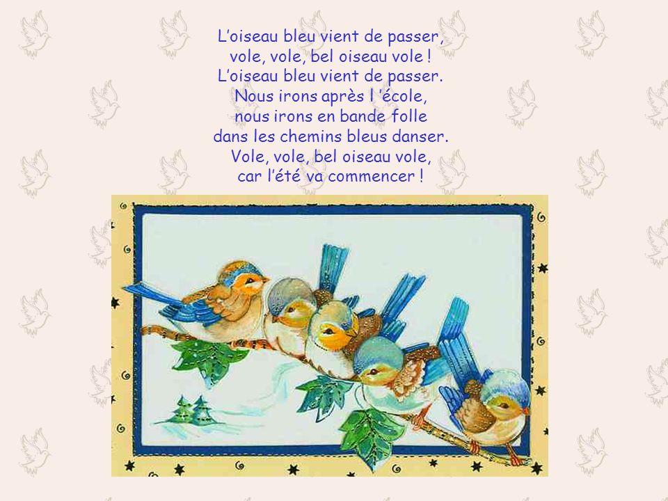Loiseau bleu vient de passer, vole, vole, bel oiseau vole .