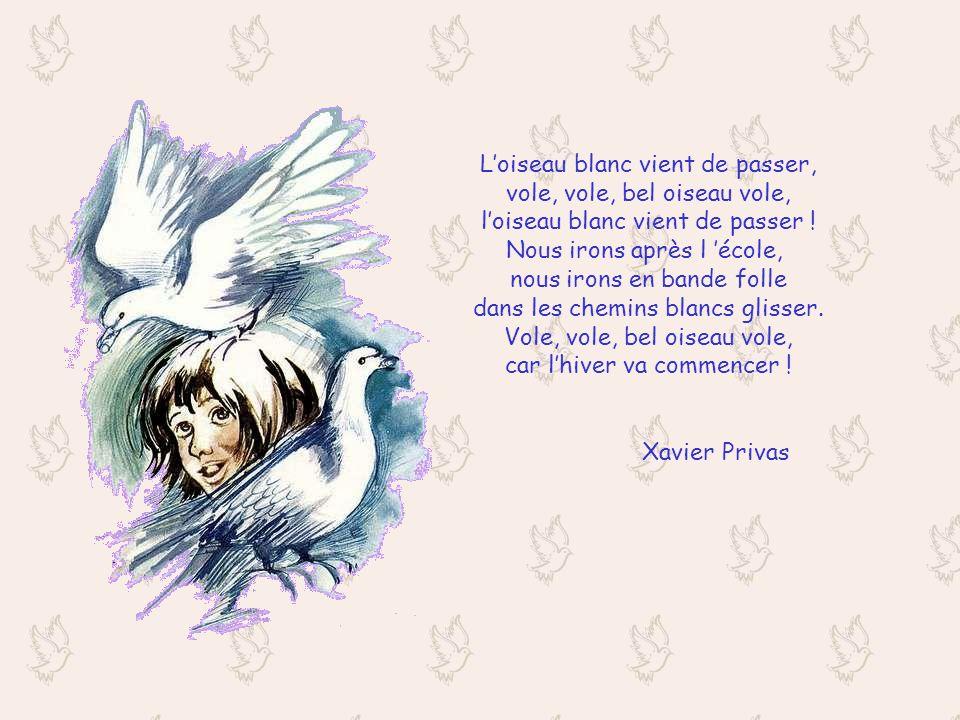 Loiseau blanc vient de passer, vole, vole, bel oiseau vole, loiseau blanc vient de passer .
