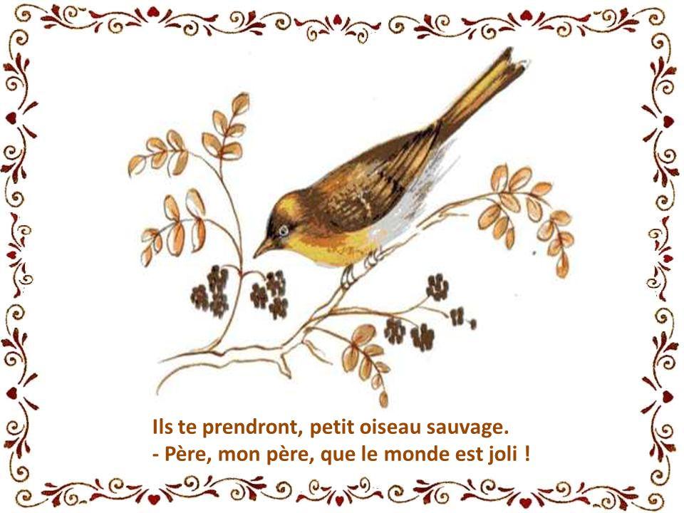 Ils te prendront, petit oiseau sauvage. - Père, mon père, que le monde est joli !