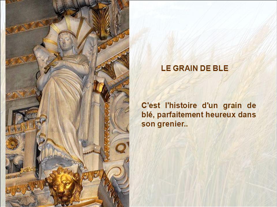 C est l histoire d un grain de blé, parfaitement heureux dans son grenier.. LE GRAIN DE BLE