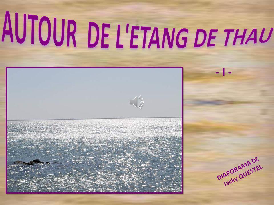 Le bassin de Thau a pour sites ostréicoles principaux : Bouzigues, Loupian, Mèze, Marseillan et Sète Au total environ 12.000 tonnes annuelles d huitre y sont produites sur quelques 1.200 hectares de bassins...