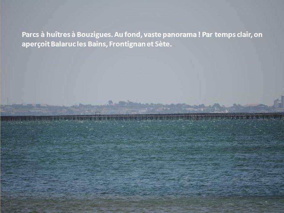 Le bassin de Thau a pour sites ostréicoles principaux : Bouzigues, Loupian, Mèze, Marseillan et Sète Au total environ 12.000 tonnes annuelles d'huitre