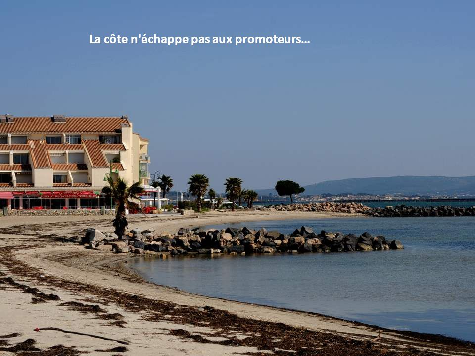 Parcs à huîtres à Bouzigues. Au fond, vaste panorama ! Par temps clair, on aperçoit Balaruc les Bains, Frontignan et Sète.