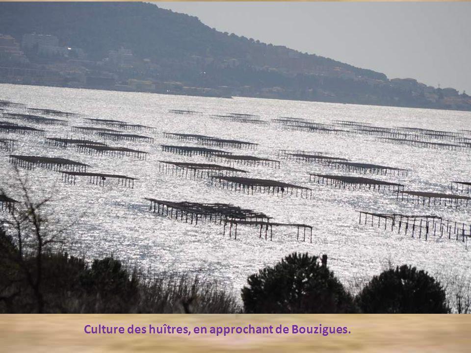 Dans ce ResThau se trouvait également le Village Provençal que je vous avais présenté dans un diaporama fort apprécié !