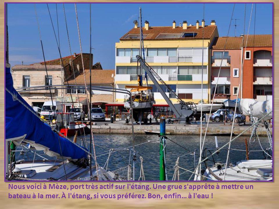 Nous voici à Mèze, port très actif sur l étang.Une grue s apprête à mettre un bateau à la mer.