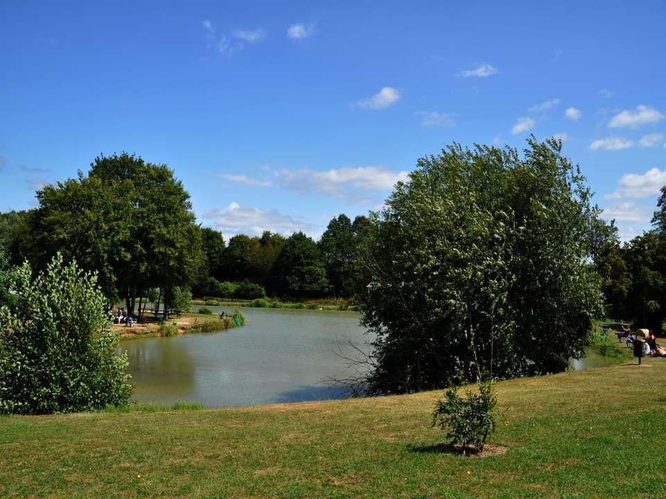 L étang de la Pinauderie, très fréquenté par les pêcheurs, les familles en promenade dominicale…