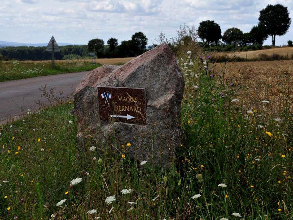 Nous avons longtemps roulé sur un chemin caillouteux, presque un sentier, à la recherche de cette Source de Vaux.