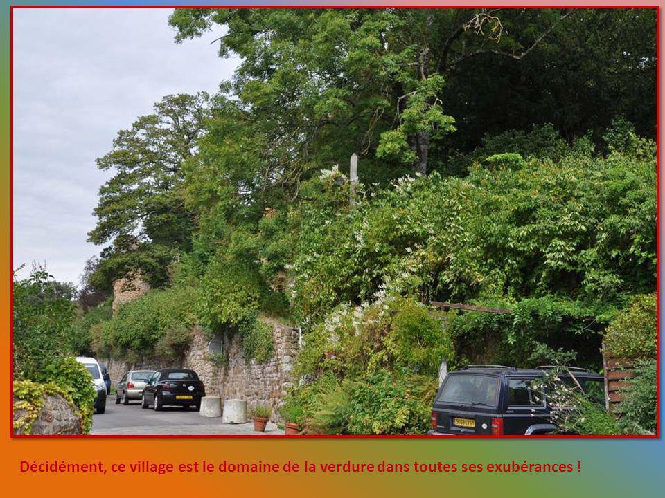 Décidément, ce village est le domaine de la verdure dans toutes ses exubérances !