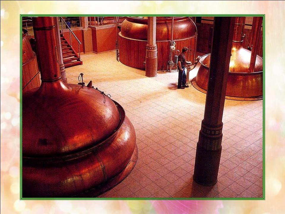 Brasserie de bière (Nord – 59) La brasserie Heineken, à Mons-en-Baroeul, à proximité de Lille, est un haut lieu de la fabrication de la bière. Dans ce