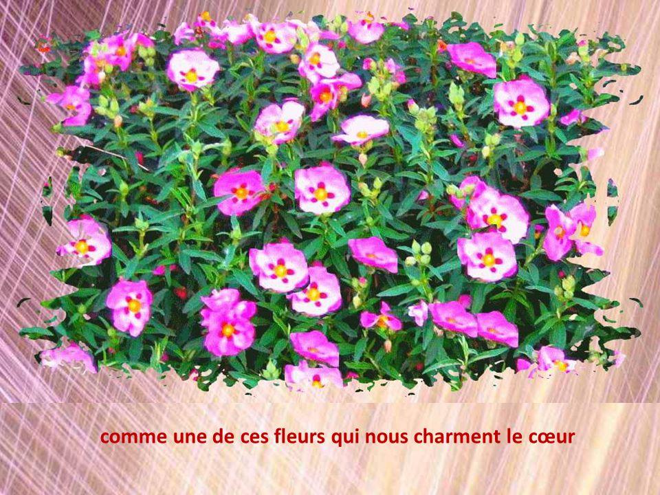 comme une de ces fleurs qui nous charment le cœur
