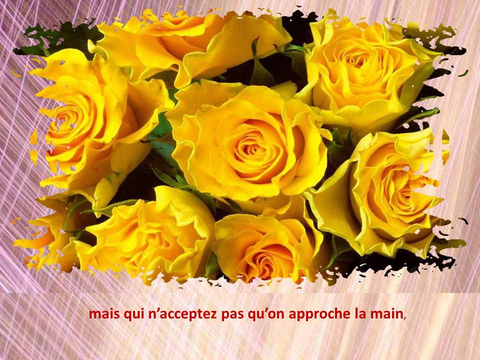 Votre cœur Madame, est comme une fleur comme une de ces fleurs qui nous charment le cœur mais savent se défendre parce que bardée dépines.