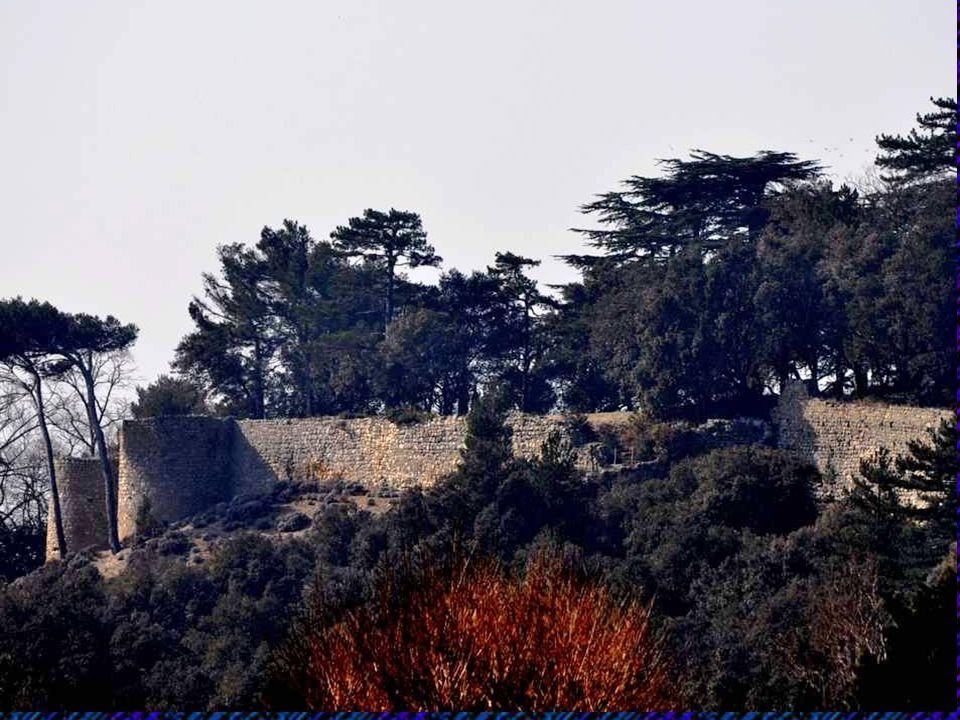 La plus importante unité viti-vinicole de l'antiquité, la villa du Mollard a été mise au jour au sud de Donzère. Elle sétendait sur deux hectares. Len