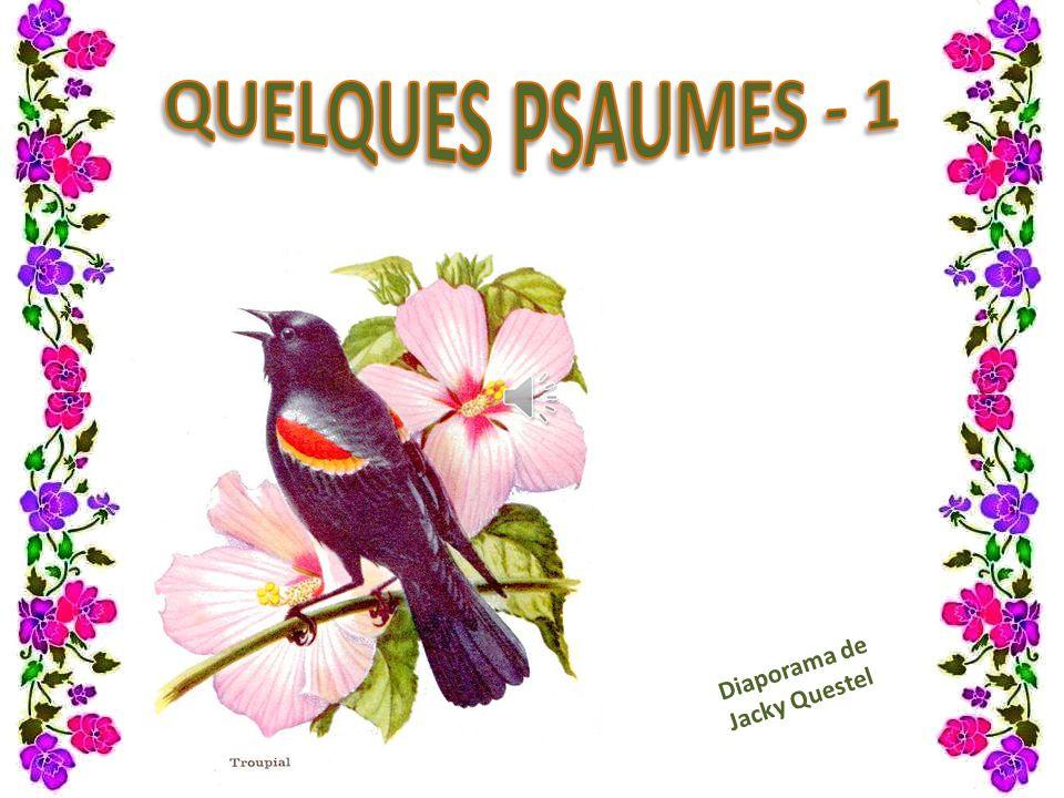 PSAUME 22 (23) Le Seigneur est mon berger Je ne manque de rien.