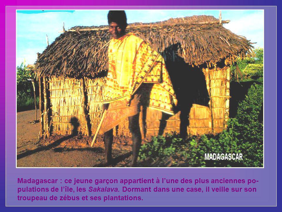 Madagascar : ce jeune garçon appartient à lune des plus anciennes po- pulations de lîle, les Sakalava.