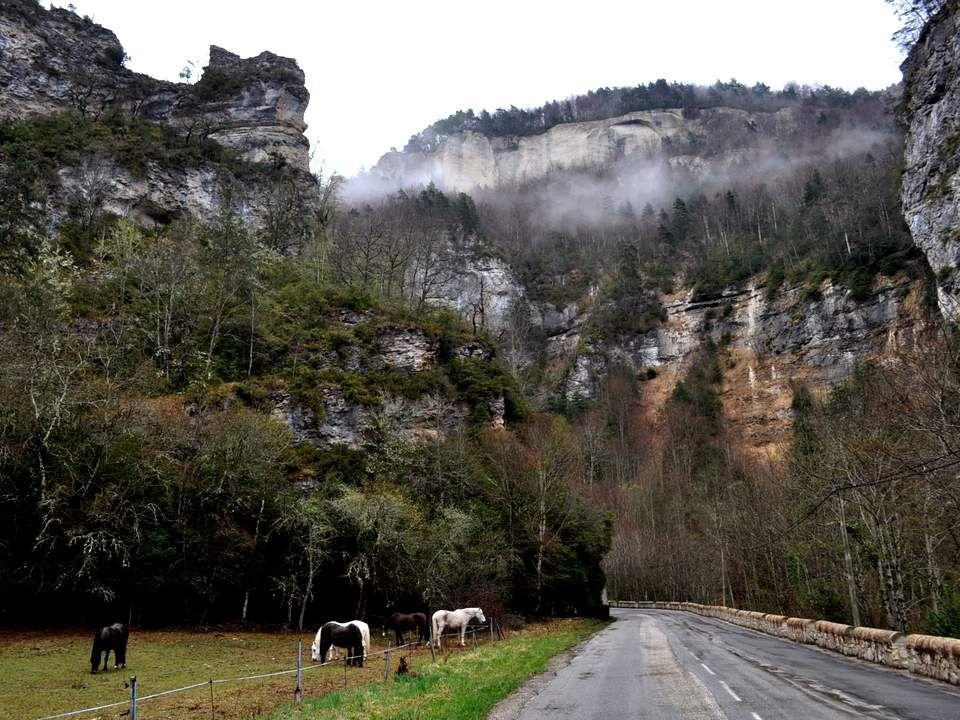 La route continue, mais semble se faufiler bien plus facilement entre rivière et montagne. Et regardez les buis sur le côté ! Qui aurait imaginé trouv