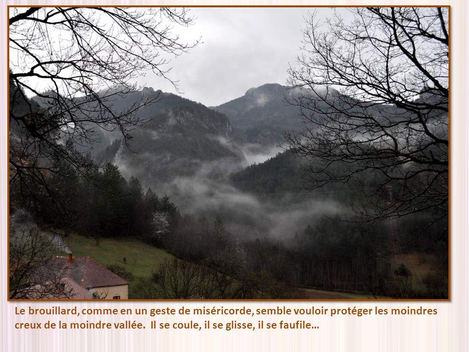 Le brouillard, comme en un geste de miséricorde, semble vouloir protéger les moindres creux de la moindre vallée.