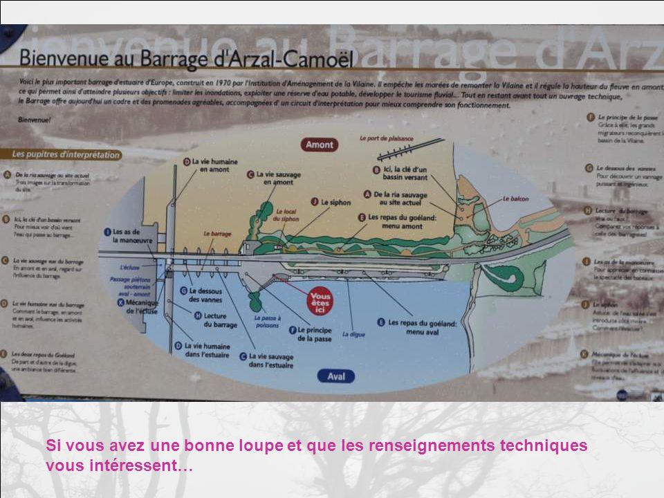 Mais peut-être, ainsi postés devant le barrage dArzal qui sert décluse et ré- gule le cours de la Vilaine, dont lestuaire est remonté par les marées, peut- être pistent-ils le poisson quils pêchent là plus aisément…