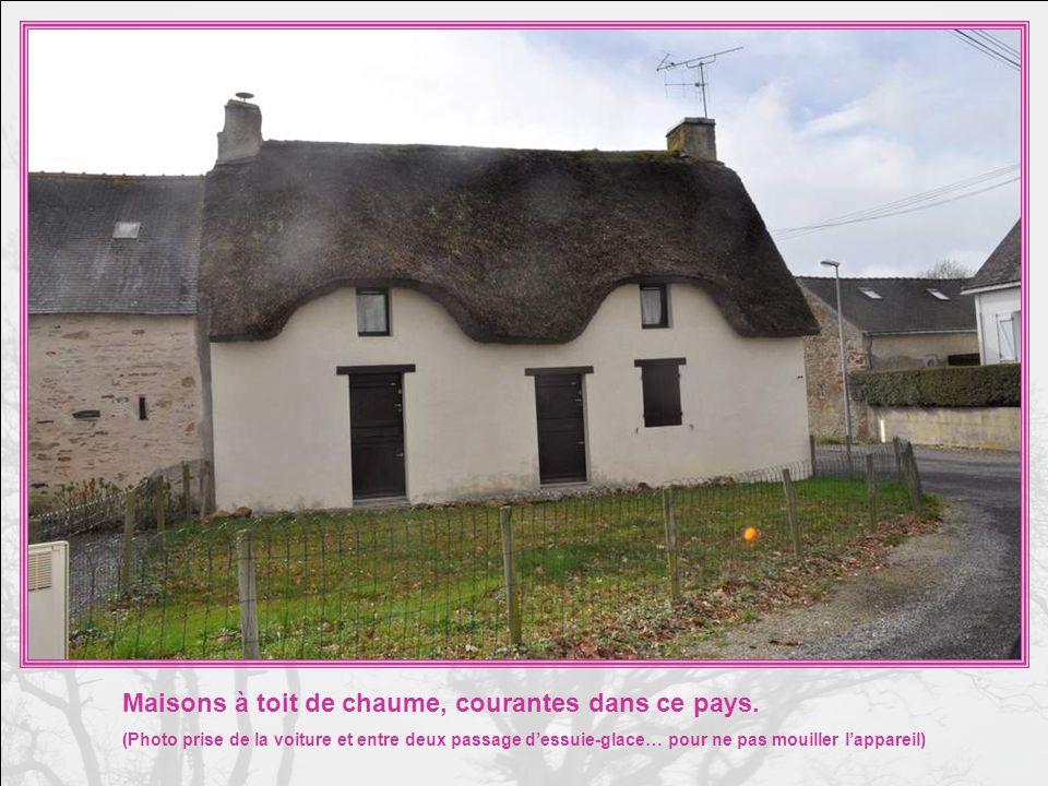 A Brézibérin, commune dAssérac, nous avons vu cette pompe ; Elle a servi pour les animaux, probablement, vu labreuvoir situé devant.